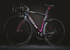 PINARELLO 2019 ROADBIKE DOGMA F101 F10 FRAME SET 215 Giro d'Italia COLOR(ピナレロ 2019年モデル ロードバイク ドグマ エフテン フレームセット ジロ・デ・イタリア カラー)
