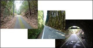 川西市 猪名川町 三田市 能勢町 ロードバイク オススメ サイクリング ルート